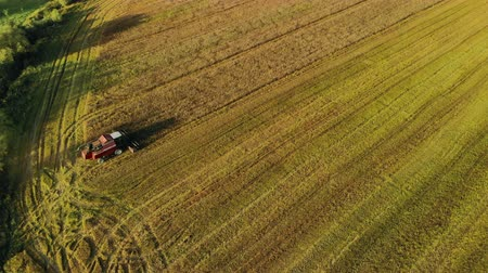 tahıllar : Aerial view of an agricultural harvester working in a large field. Beautiful, Sunny landscape of the plantation with a special harvesting machine for golden ripe wheat