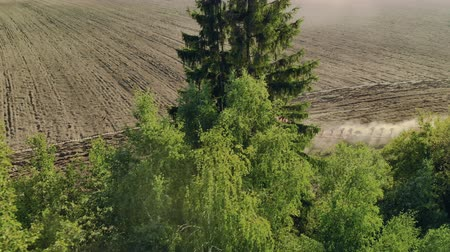 beplanting : Aerial view of a red working tractor with a plow behind roadside plantings. Technology of soil treatment before planting plant seeds. The drone follows the farm vehicle through the trees