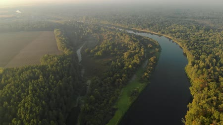 valóság : Amazing and beautiful panorama of the natural landscape from a birds eye view. Bend of the river and its floods, wildlife in the sun. Reflection of trees in the river at dawn