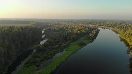 表示回数 : Amazing and beautiful panorama of the natural landscape from a birds eye view. Bend of the river and its floods, wildlife in the sun. Reflection of trees in the river at dawn