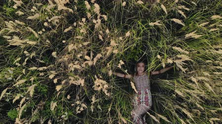 hippie : Top view of a Caucasian hippie girl lying on her back in a field of dry grass. An attractive woman spreads the stems of plants covering her face and poses. Drone flies up from the model
