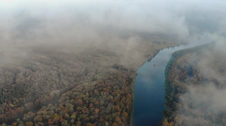 meio dia : Aerial: flying through a haze of clouds to a stunning autumn landscape with a winding river surrounded by a forest with colorful tree crowns. Circular motion of the drone Vídeos