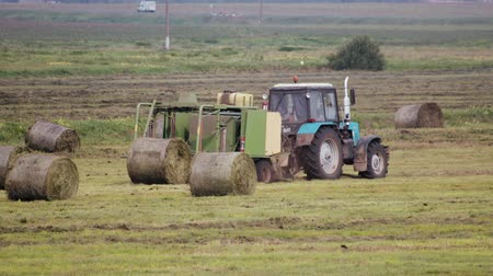 preslenmiş : A tractor pulling a large round baler from which a bale of high-value cattle feed emerges