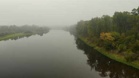 resfriar : Early, foggy morning, water surface on the river, green trees that are reflected in the water. Flying a quadrocopter in the fog