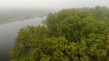 maravilhoso : Fantastic misty river with fresh green trees reflecting in the water. Dramatic colorful landscapes. The world of beauty , the view from the top Stock Footage