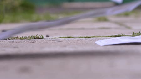 cash free : money fly across the sidewalk from the wind close up Stock Footage
