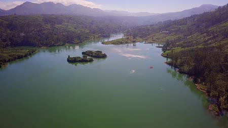 reservoir : Aerial shot of river and tea plantations in Sri Lanka Stock Footage
