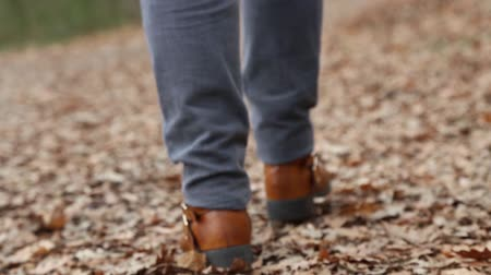 aureool : Woman in jeans walking on the carpet of dry leaves. Stockvideo