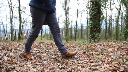 hale : Woman in jeans walking on the carpet of dry leaves. Stok Video