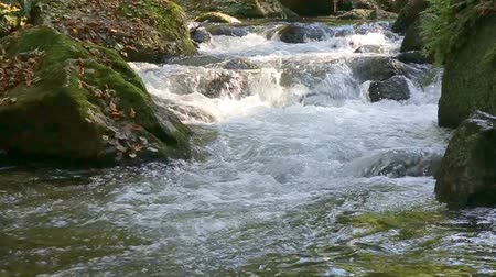 torrente : The water flows quickly into the sun.