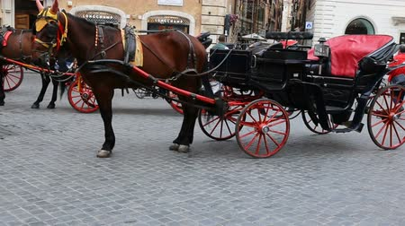 cavalo vapor : May 12, 2018, Rome, Italy. Rome, Piazza di Spagna, tourists and carriages with horses. The horse-drawn carriages in the Spanish Steps in Rome.
