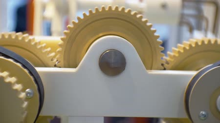 cogwheels : rotating mechanical details of a complex mechanism