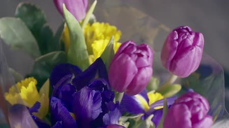bouquet of bright spring flowers Stock Footage