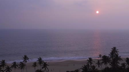 hikkaduwa : Tropical sunset. The sun sets over the ocean, the sea waves in the evening, tropical pams and ocean Stock Footage