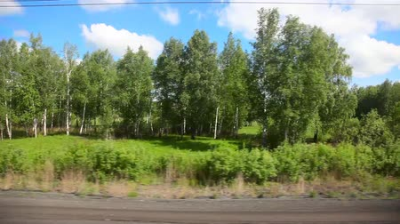 window : Siberian landscape through the window of an express train. Stock Footage