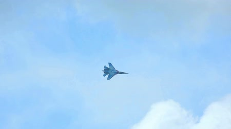 истребитель : Su-27 Sukhoi jet fighter performing aerobatic flight at the airshow near Novosibirsk. Стоковые видеозаписи