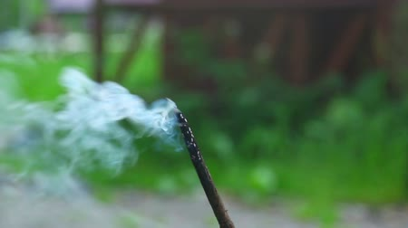 incenso : Smoldering birch twig with a lot of smoke. Shallow depth of field