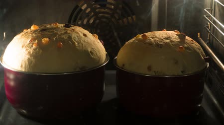 cakes : Easter cake baked in the oven, time-lapse Stock Footage