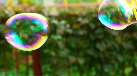 bright bubble : Male blow soap bubbles, slow motion