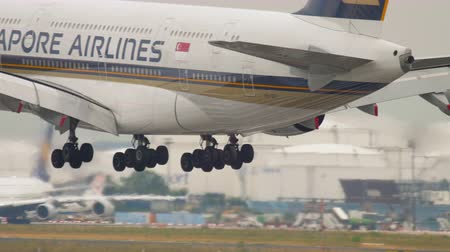 singapur : Airplane landing in Frankfurt Stok Video