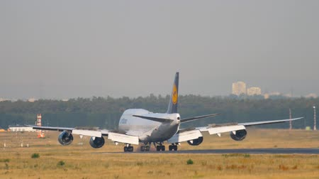 lufthansa : Airplane landing in Frankfurt Stock Footage