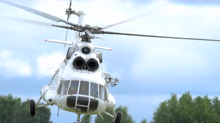mi : Helicopter at airshow Stock Footage