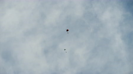 tropas : Paratroopers in free flight