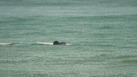 unidentified : Surfer on the waves at havy rain