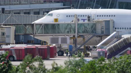搭乗 : Disabled passengers boarding in plane by jetway terminal
