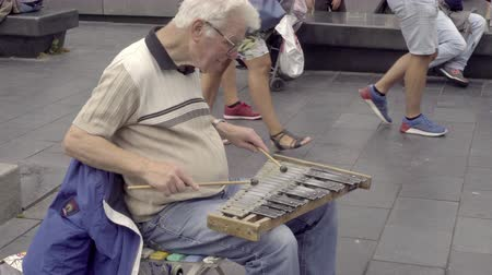 percussão : A street musician plays a homemade xylophone Stock Footage