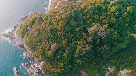 alpler : Aeriel view of stunning hillside with shoreline Stok Video