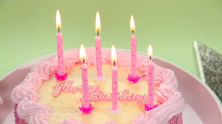 biszkopt : A beautiful cake with light candles to blow out wishing you a Happy Birthday. Wideo