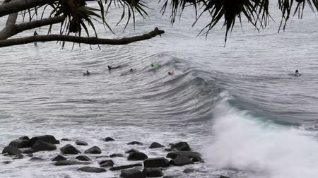prancha de surfe : Board riders surfing waves at Burleigh Heads in Queensland Australia.