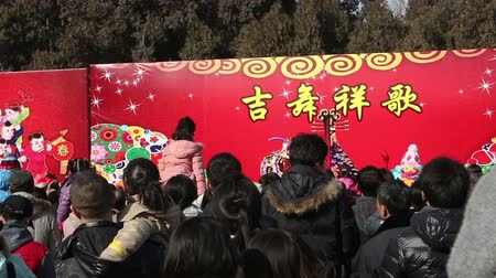 Пекин : Beijing,China-Feb 2, 2014: Visitors stand still for watching acrobatics show at temple fair during Chinese Spring Festival in Beijing, China Стоковые видеозаписи