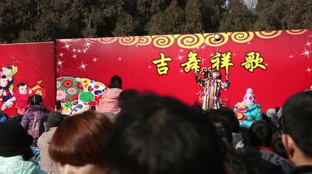 ditan : Beijing,China-Feb 2, 2014: Visitors stand still for watching acrobatics show at temple fair during Chinese Spring Festival in Beijing, China Stock Footage
