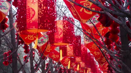 ditan : The red lanterns and decorated stuff hanging in the tree