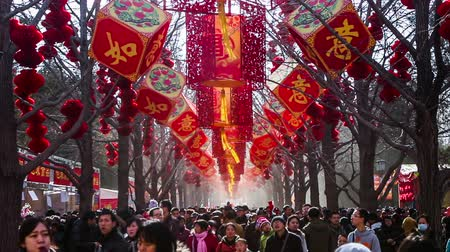 ano novo chinês : Beijing,China-Feb 2, 2014: thousand of people have fun at temple fair in Ditan Park during Chinese Spring Festival in Beijing, China Vídeos