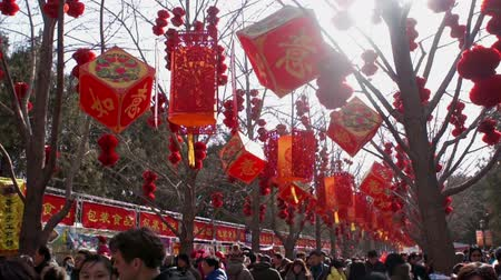 ditan : Beijing,China-Feb 2, 2014: Crowded visitors walk under the red lanterns at temple fair in Ditan Park during Chinese Spring Festival in Beijing, China Stock Footage