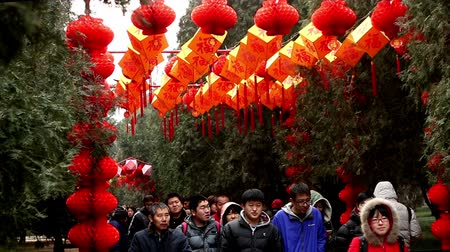 ditan : Beijing,China-Feb 6, 2014: People walk under the red lanterns at Ditan temple fair during Spring Festival in Beijing, China Stock Footage