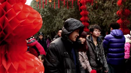 ditan : Beijing,China-Feb 6, 2014: People walk under the red lanterns at Ditan temple fair during Spring Festival in Beijing, China1