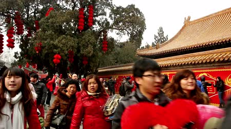 ditan : Beijing,China-Feb 6, 2014: Visitors take photos in front of decorated wall at Ditan temple fair during Spring Festival in Beijing, China Stock Footage
