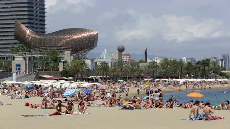 Каталония : BARCELONA, SPAIN - JULY 15, 2014: Beach of Barcelona in summer.  Mediterranean coast in Catalonia has beaches with entertainment to suit all tastes