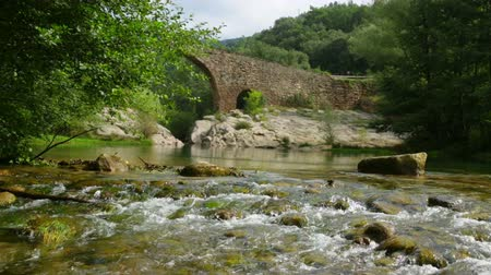 arch bridges : Mountain river with medieval stone bridge in  Pyrenees. Llobregat, Catalonia