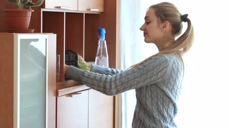 temizleme maddesi : Happy housewife cleaning cabinet with sprayer and shred