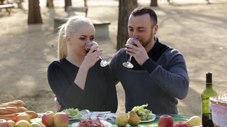 europeu : Loving young couple drinking wine and talking on picnic