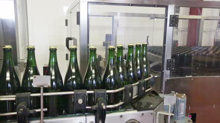espumante : Industrial production shot with sparkling wine bottles on the conveyor belt in a factory Vídeos