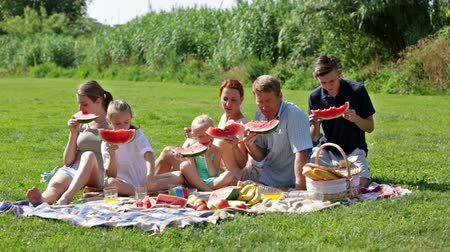 ebéd : happy man and woman with four kids having watermelon on picnic together Stock mozgókép