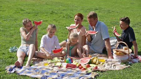 seis : cheerful parents with four kids enjoying watermelon on picnic on sunny summer day