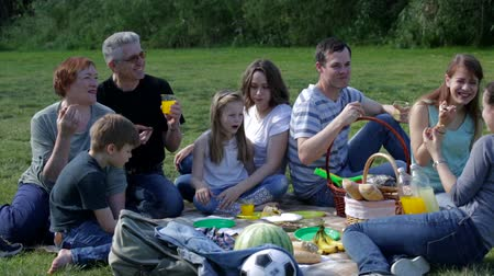 irmãs : Cheerful males and females eating different food on picnic