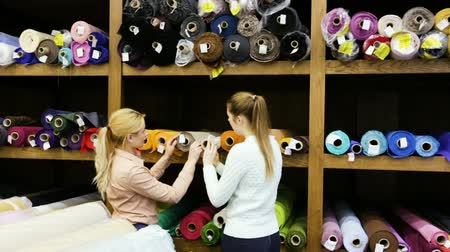vystavený : Portrait of two positive attractive girls choosing a fabric among diversity on shelves in store Dostupné videozáznamy